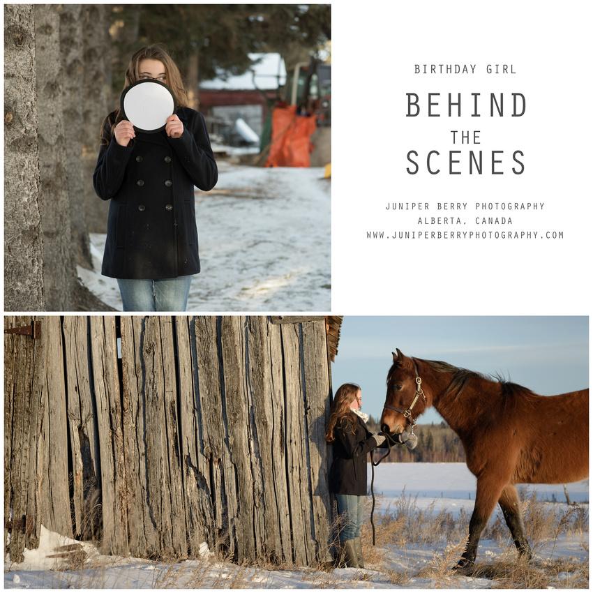 Alberta Photographer, Portrait Photography, horses, Canada