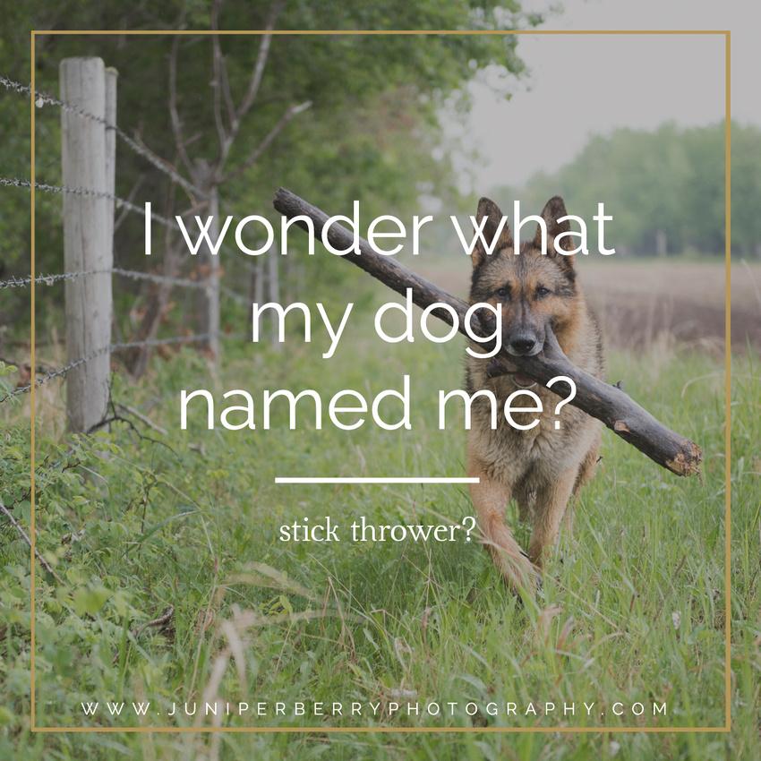 I wonder what my dog named me